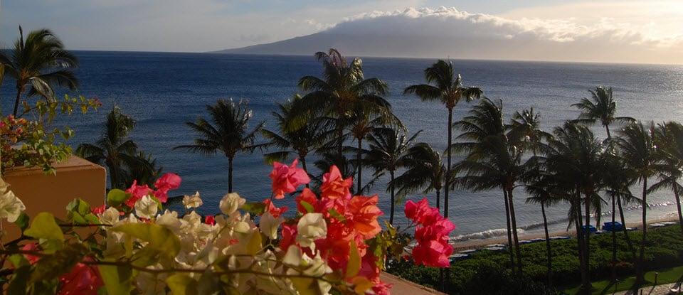 maui-hawaii.jpg.webp