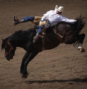 Saddle Flying