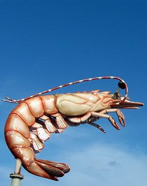 Jumbo shrimp - the classic oxymoron